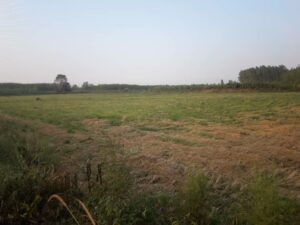 فروش زمین روستایی ۹۰۰ متری همراه سند دفتر چه ای و بدون قناسی